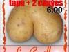 Carta Mundo Patata